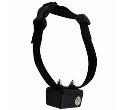 PetSafe Extra Replacement Collars petsafe sd 2025