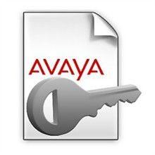 Optional Software avaya 700505017