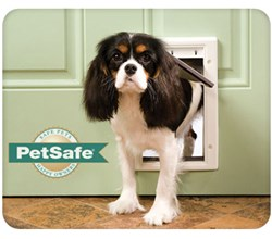 PetSafe Pet Doors petsafe plasticpetdoor