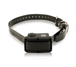 PetSafe Collars petsafe sbc 10r