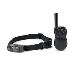 little dog yard Trainer sd petsafe sd 105s