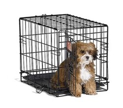 Midwest iCrate Single Door Dog Crates midwest i 1518