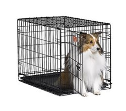 Midwest iCrate Single Door Dog Crates midwest i 1530
