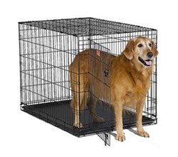 Dog Crates for Dogs 71 90 Lbs. midwest i 1542