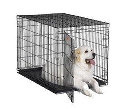 Midwest iCrate Single Door Dog Crates midwest i 1548
