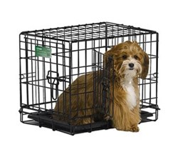Midwest iCrate Double Door Dog Crates midwest i 1518dd