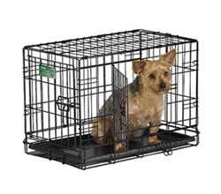 Midwest iCrate Double Door Dog Crates midwest i 1522dd