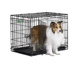 Midwest iCrate Double Door Dog Crates midwest i 1530dd