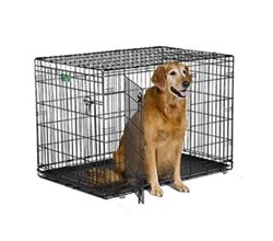 Dog Crates for Dogs 71 90 Lbs. midwest i 1542dd