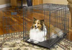 30 Inch Dog Crates midwest 1330td