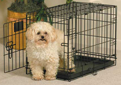 Midwest Life Stages Single Door Dog Crates midwest ls 1622