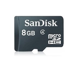 Spirit Series LG MicroSD 8GB