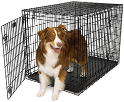 Dog Crates for Dogs 71 90 Lbs. 742UP