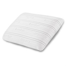 Serta Pillows  serta pillows