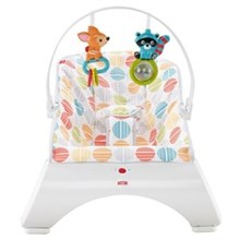 Bouncers and Rockers fisher price cfb88