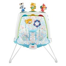 Bouncers and Rockers fisher price cjt92