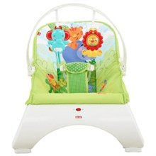 Bouncers and Rockers fisher price ckr34