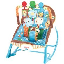 Bouncers and Rockers fisher price y7872