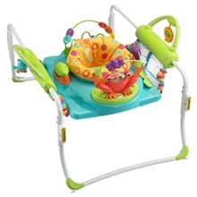 Activity Gyms and Jumpers fisher price bfb21