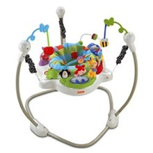 Activity Gyms and Jumpers fisher price w9466