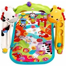 Activity Gyms and Jumpers fisher price ccb70