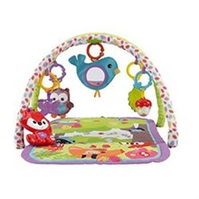 Activity Gyms and Jumpers fisher price cdn47