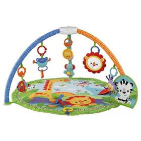fisher price y6590