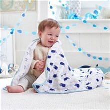 Dream Blankets Aden Anais New 2015 Print Dream Blanket
