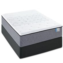 Sealy Mattress  sealy pp drakesboro firm twin xl lo pro set