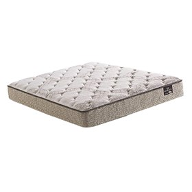 ferrera plush twin size mattress only