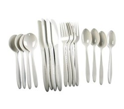 Coleman Kitchen Essentials coleman 16 piece polycarbonate flatware