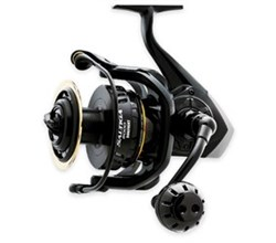 Saltiga Magsealed Dog Fight Reels daiwa saltiga8000df