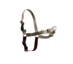 Dog Harness petsafe easy walk harness