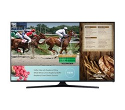 Samsung TV Professional Displays samsung b2b rh48e