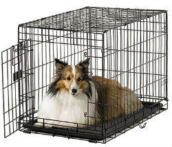 30 Inch Dog Crates midwest ace 430