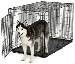 48 Inch Dog Crates midwest ace 448