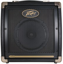 Peavey 50 Watts and below  peavey ecoustic e 20