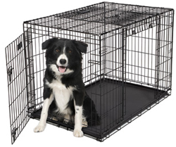Dog Crates for Dogs 71 90 Lbs. midwest 1942dd