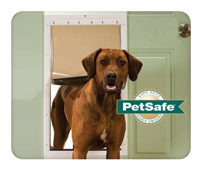 petsafe plasticpetdoor xl