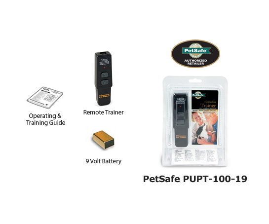 PUPT 100 19