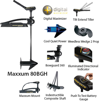 Maxxum80/BG/H(52)