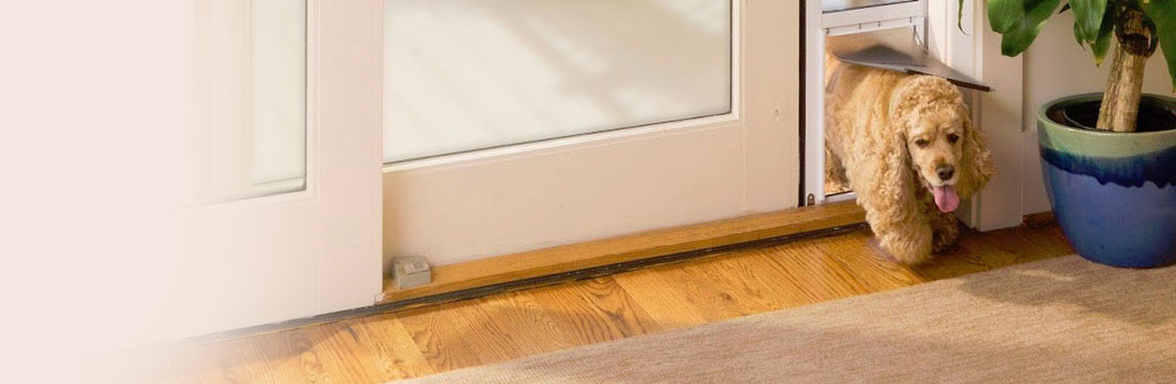 Petsafe Freedom Door