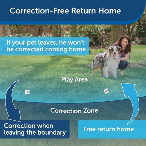 petsafe if 100 wireless fence transmitter