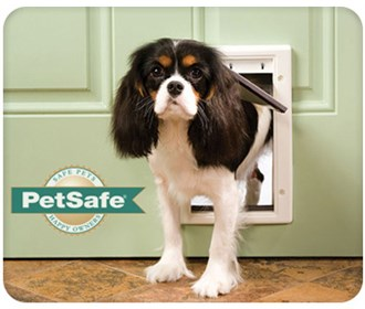 petsafe ppa00 10958 plastic pet door