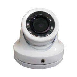 "<li><span class=""blackbold"">Navico Mini Camera</span></li>