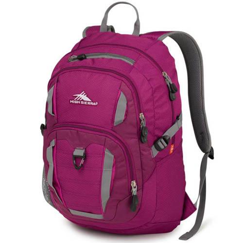 high sierra ryler backpack