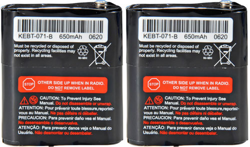 motorola 53615 category 2 pack