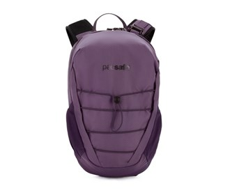 pacsafe venturesafe 12l backpack