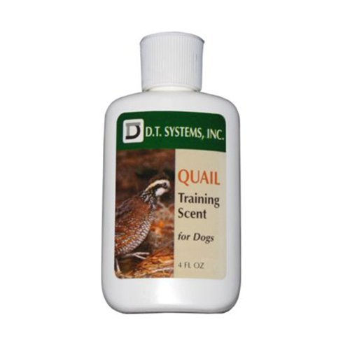 dt systems training scent 4 ounce