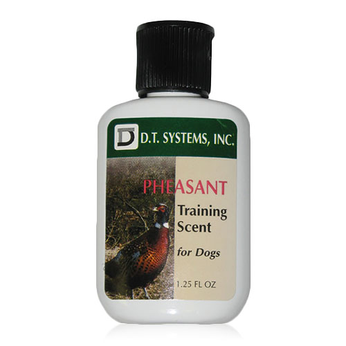 dt systems training scents sm
